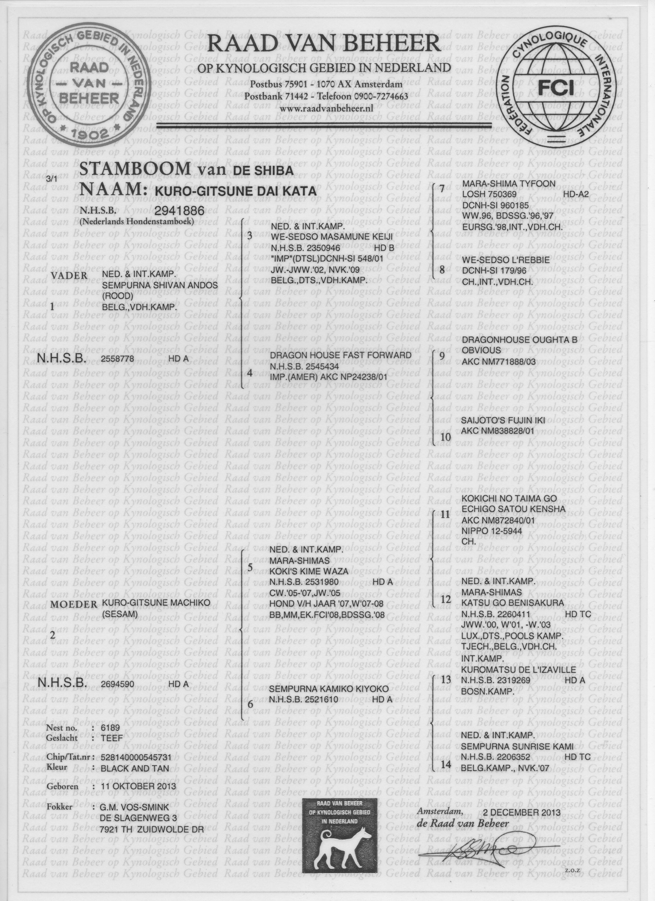 Stamboom Dai