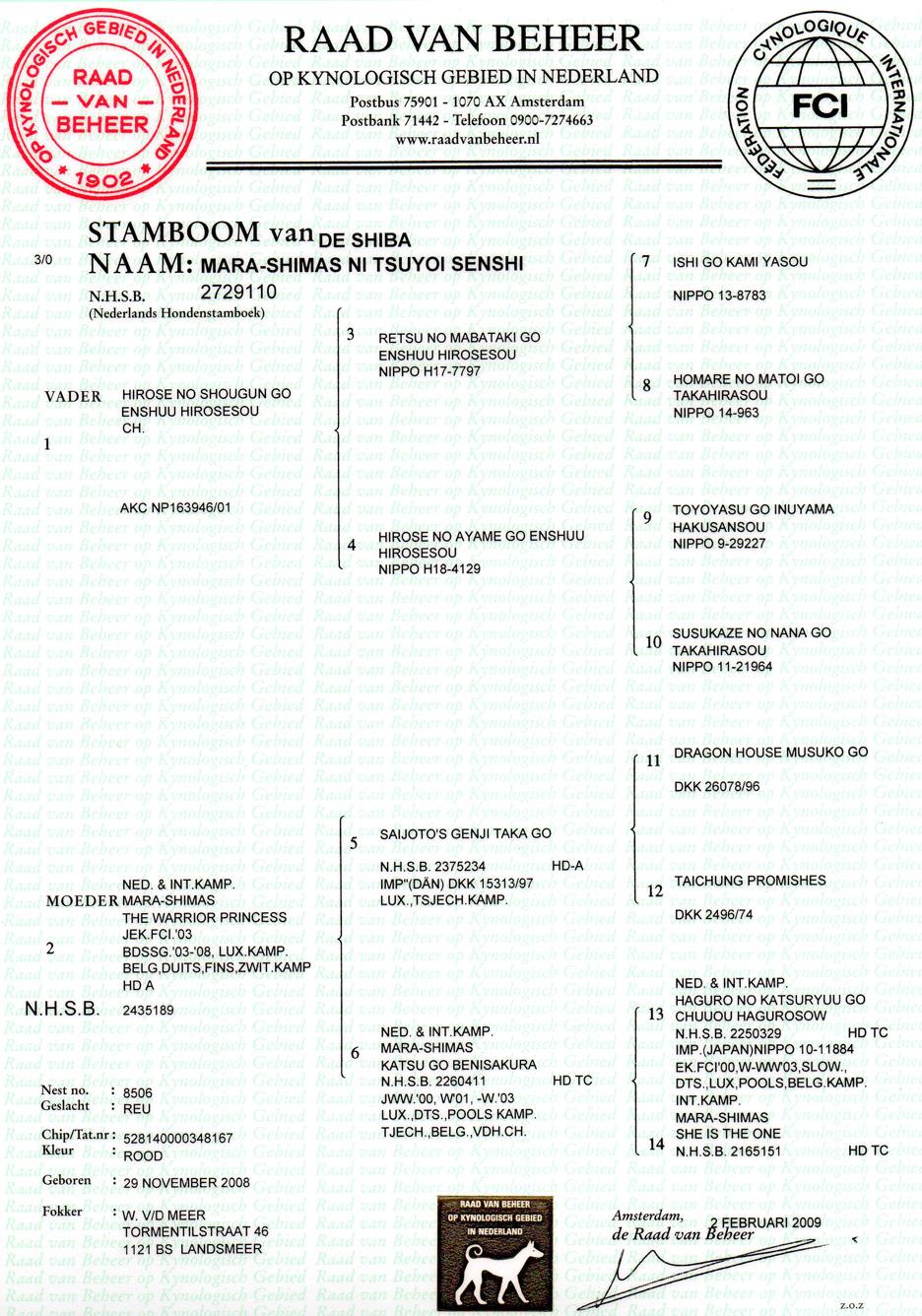 stamboom-Tarzai_40